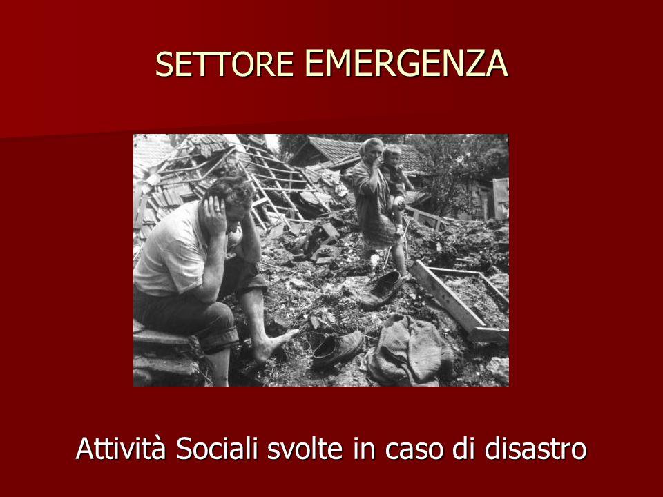 Attività Sociali svolte in caso di disastro