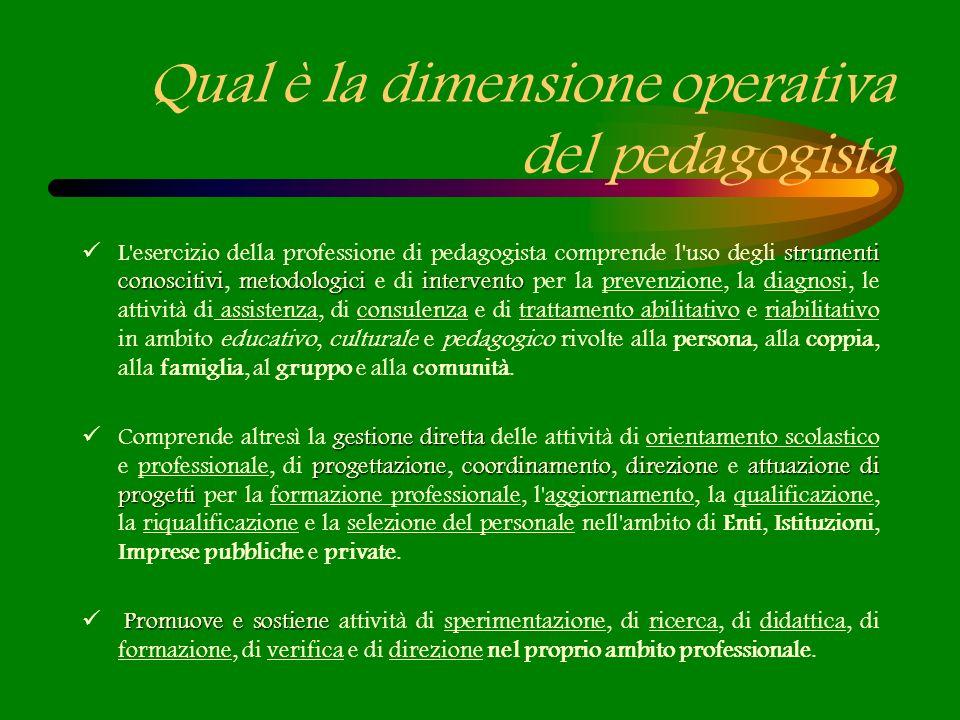 Qual è la dimensione operativa del pedagogista