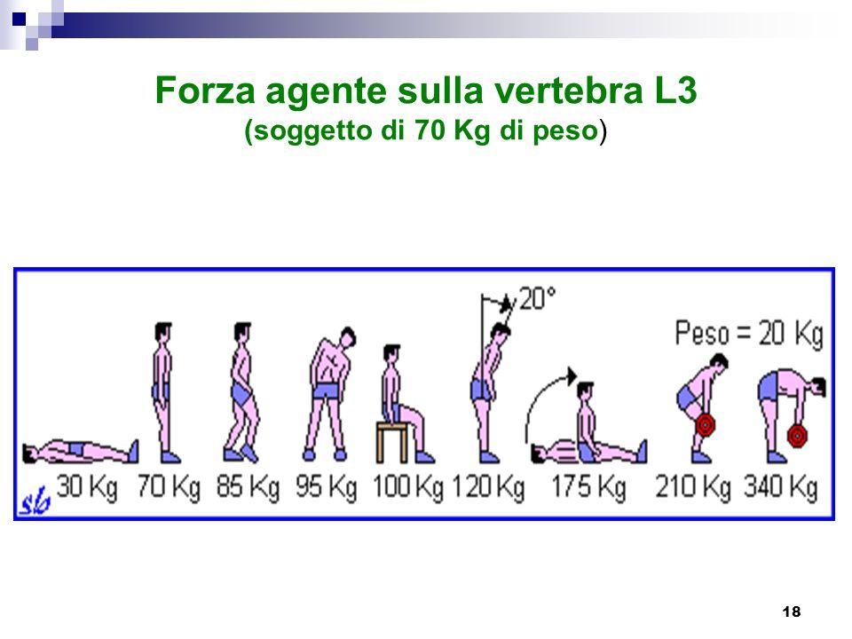 Forza agente sulla vertebra L3 (soggetto di 70 Kg di peso)