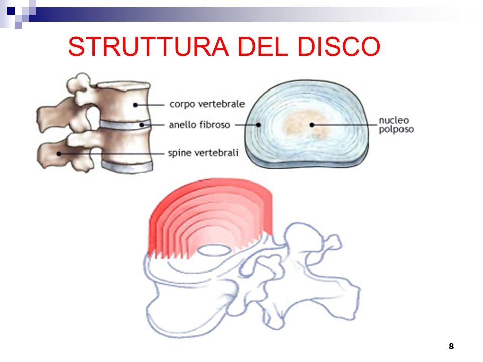 STRUTTURA DEL DISCO