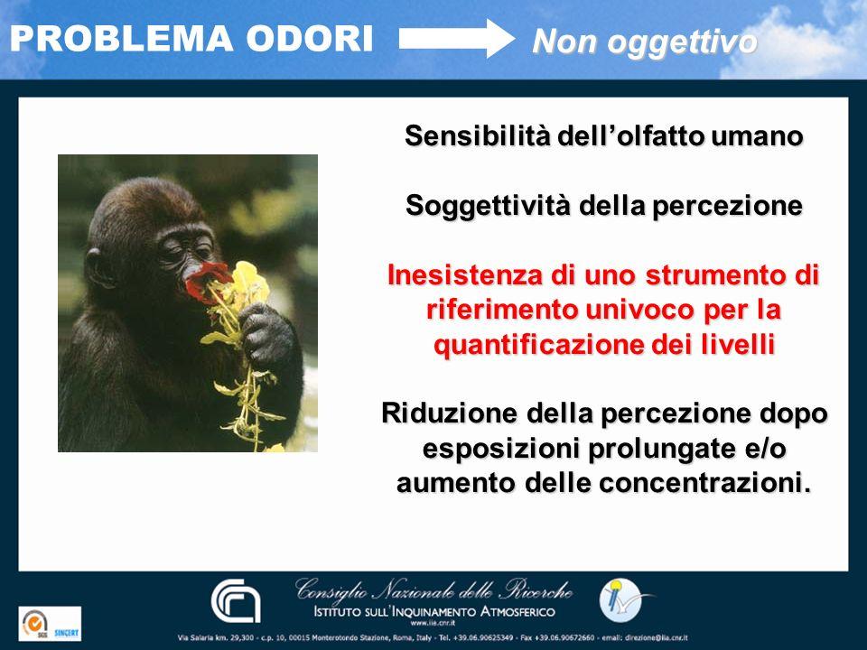 Sensibilità dell'olfatto umano Soggettività della percezione