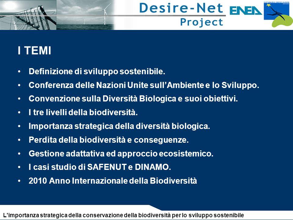 I TEMI Definizione di sviluppo sostenibile.