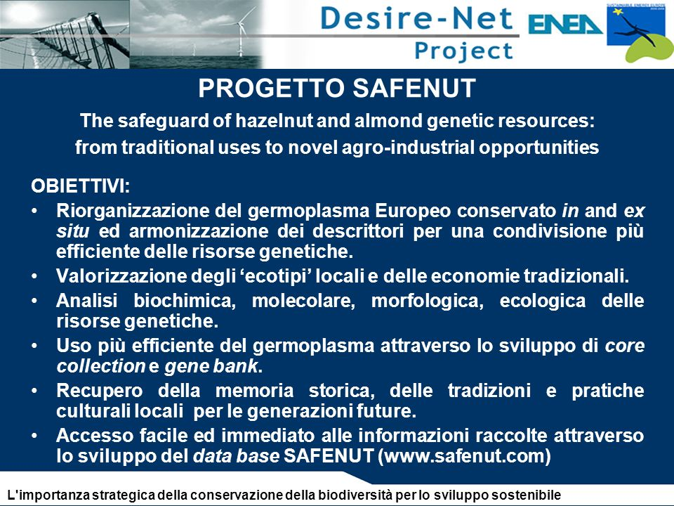 PROGETTO SAFENUT The safeguard of hazelnut and almond genetic resources: from traditional uses to novel agro-industrial opportunities