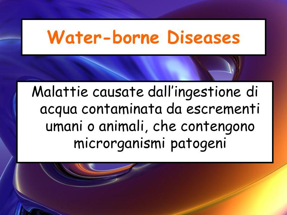 Water-borne Diseases Malattie causate dall'ingestione di acqua contaminata da escrementi umani o animali, che contengono microrganismi patogeni.