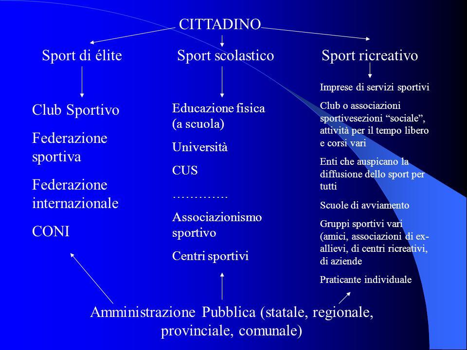 Amministrazione Pubblica (statale, regionale, provinciale, comunale)