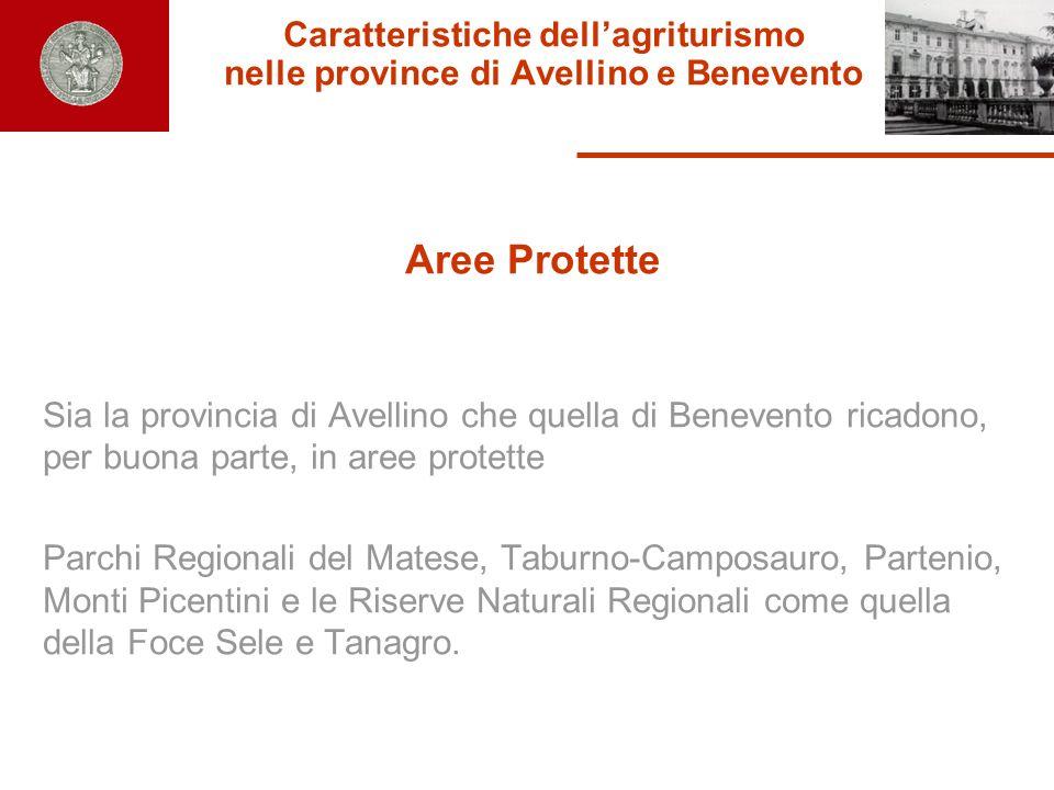 Caratteristiche dell'agriturismo nelle province di Avellino e Benevento