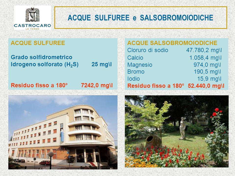 ACQUE SULFUREE e SALSOBROMOIODICHE