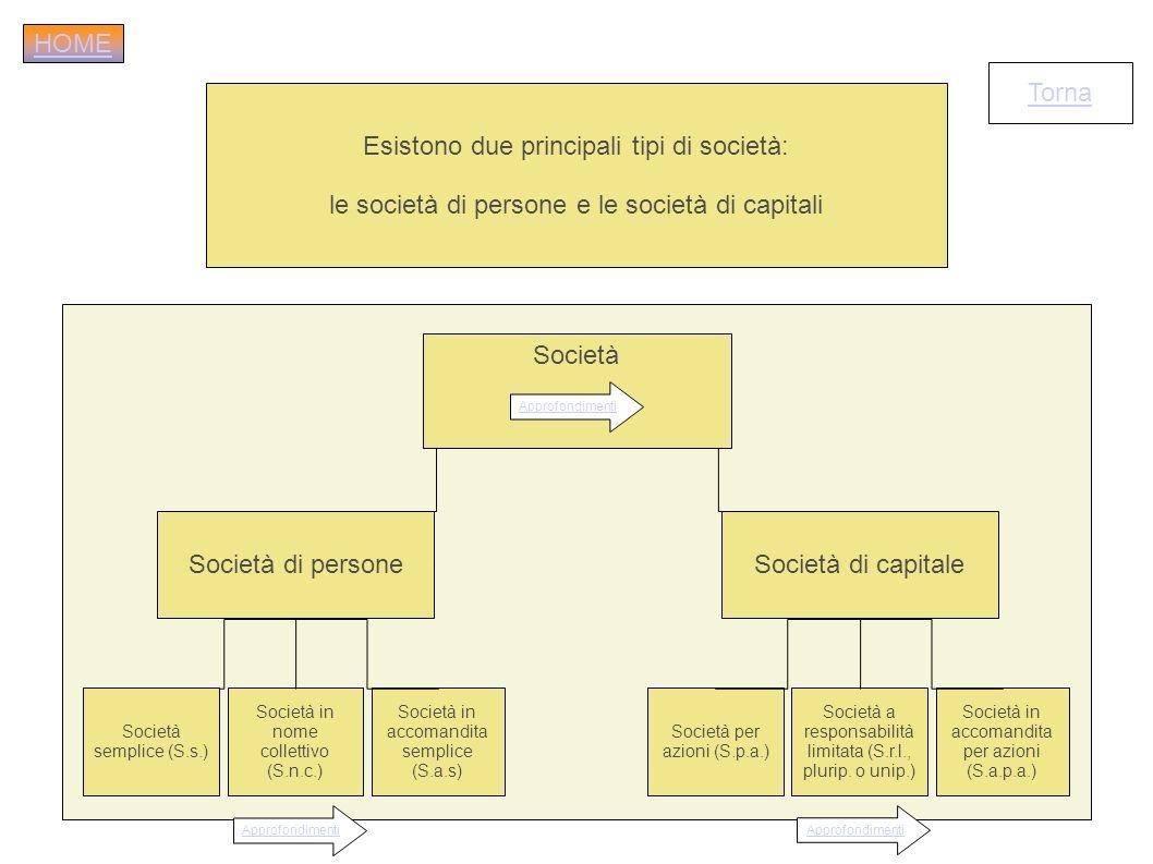 Esistono due principali tipi di società:
