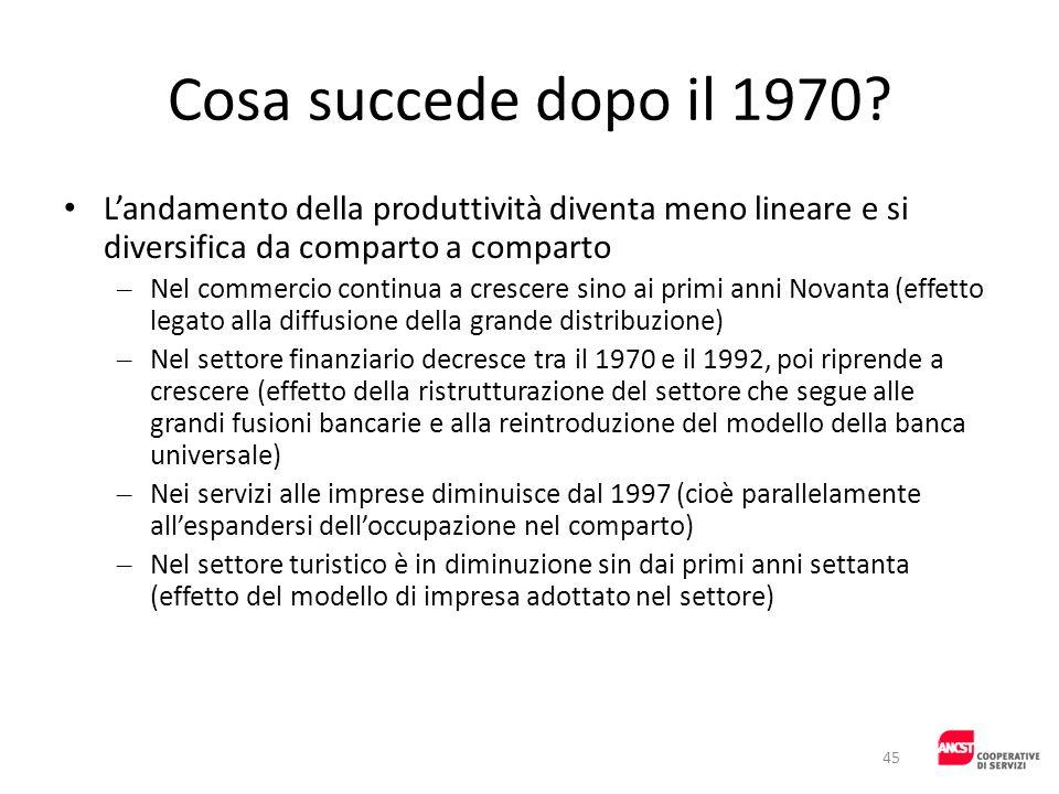 Cosa succede dopo il 1970 L'andamento della produttività diventa meno lineare e si diversifica da comparto a comparto.