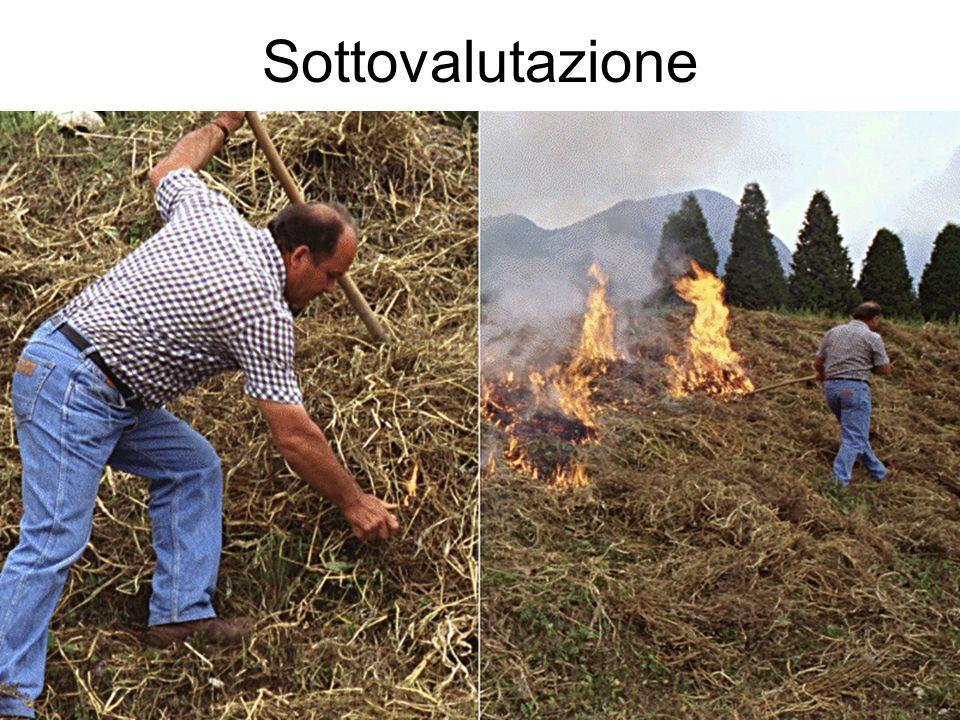 Sottovalutazione