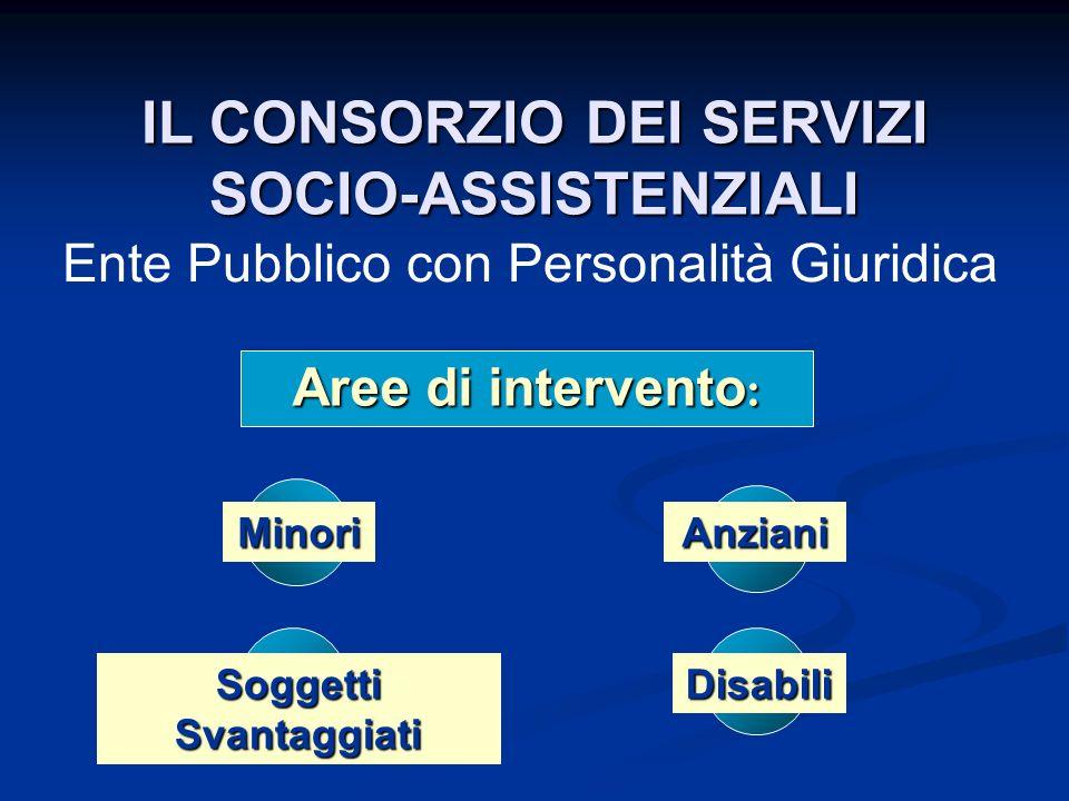 IL CONSORZIO DEI SERVIZI SOCIO-ASSISTENZIALI Soggetti Svantaggiati