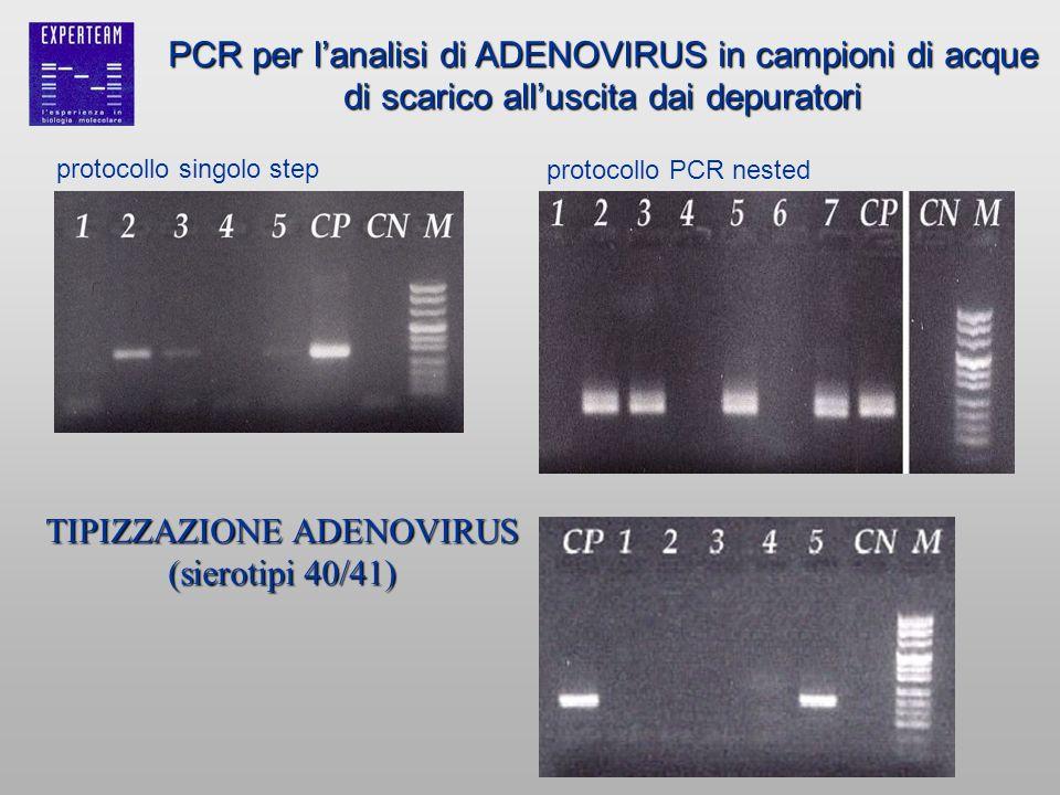 TIPIZZAZIONE ADENOVIRUS (sierotipi 40/41)