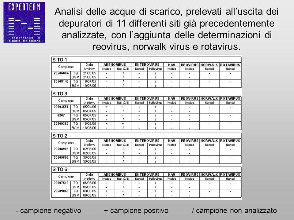 Analisi delle acque di scarico, prelevati all'uscita dei depuratori di 11 differenti siti già precedentemente analizzate, con l'aggiunta delle determinazioni di reovirus, norwalk virus e rotavirus.
