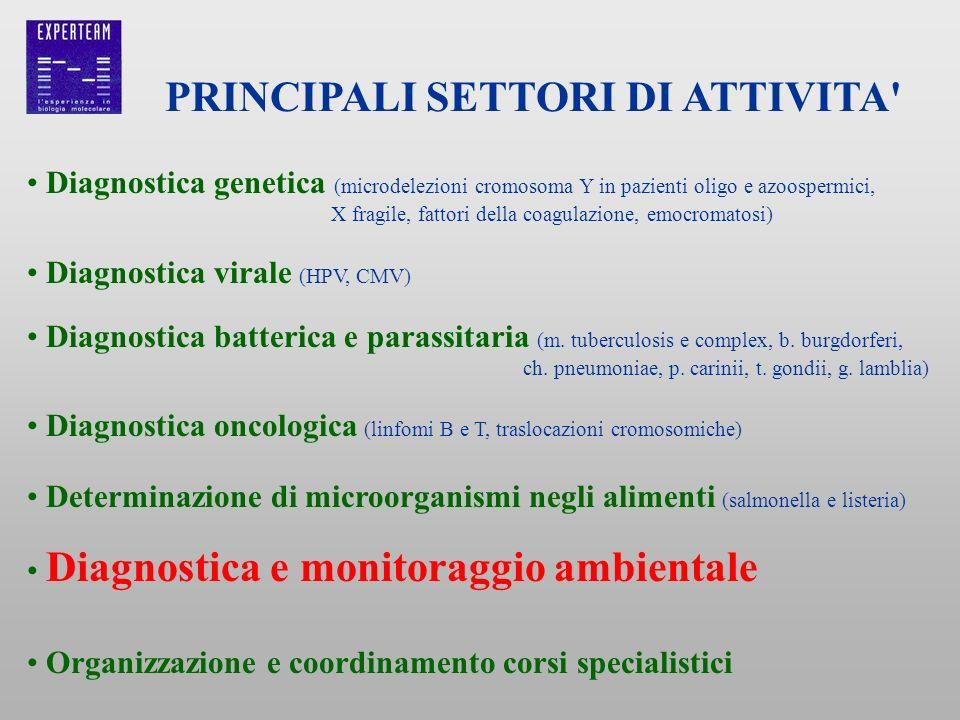 PRINCIPALI SETTORI DI ATTIVITA