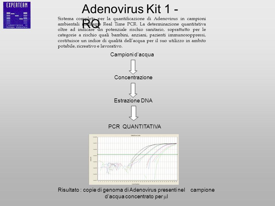 Adenovirus Kit 1 -RQ Campioni d'acqua Concentrazione Estrazione DNA
