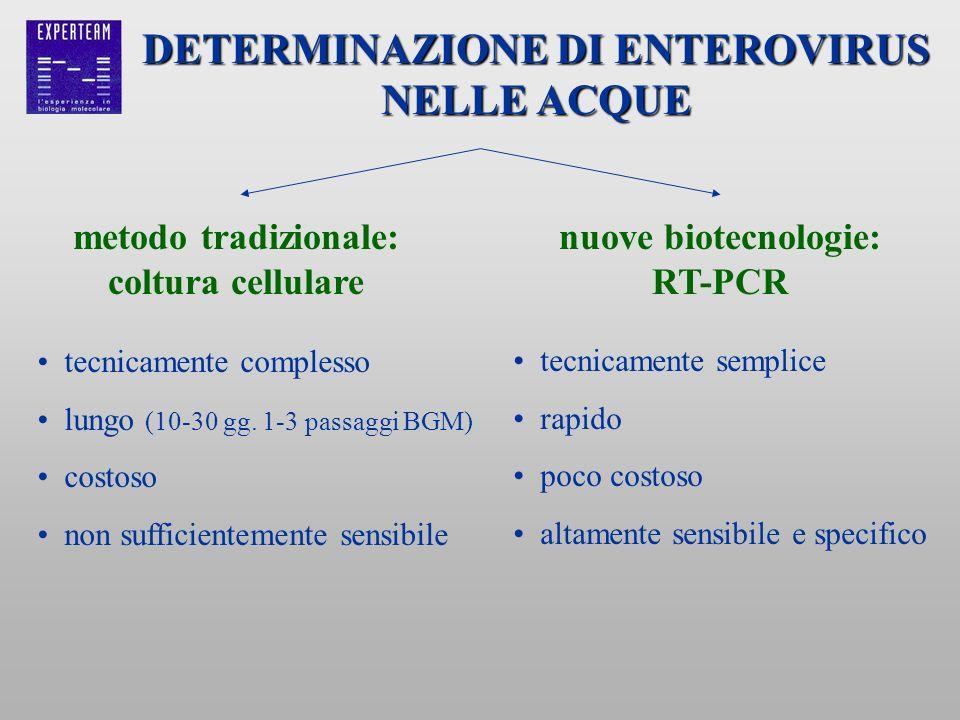 DETERMINAZIONE DI ENTEROVIRUS NELLE ACQUE