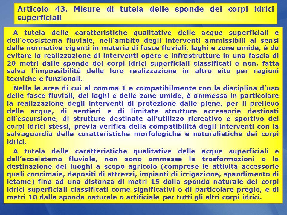 Articolo 43. Misure di tutela delle sponde dei corpi idrici superficiali