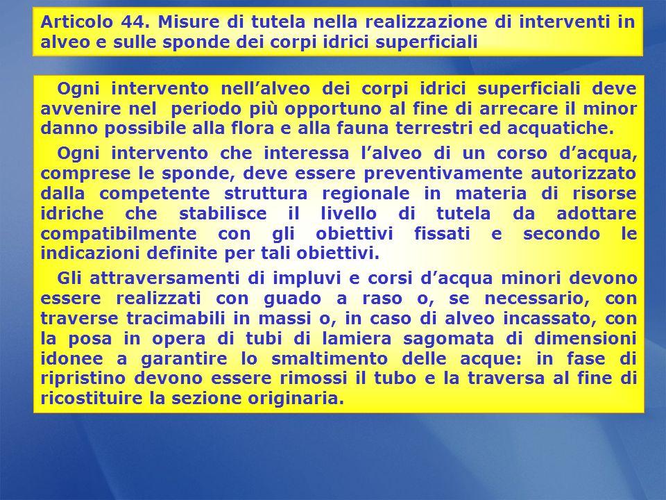 Articolo 44. Misure di tutela nella realizzazione di interventi in alveo e sulle sponde dei corpi idrici superficiali
