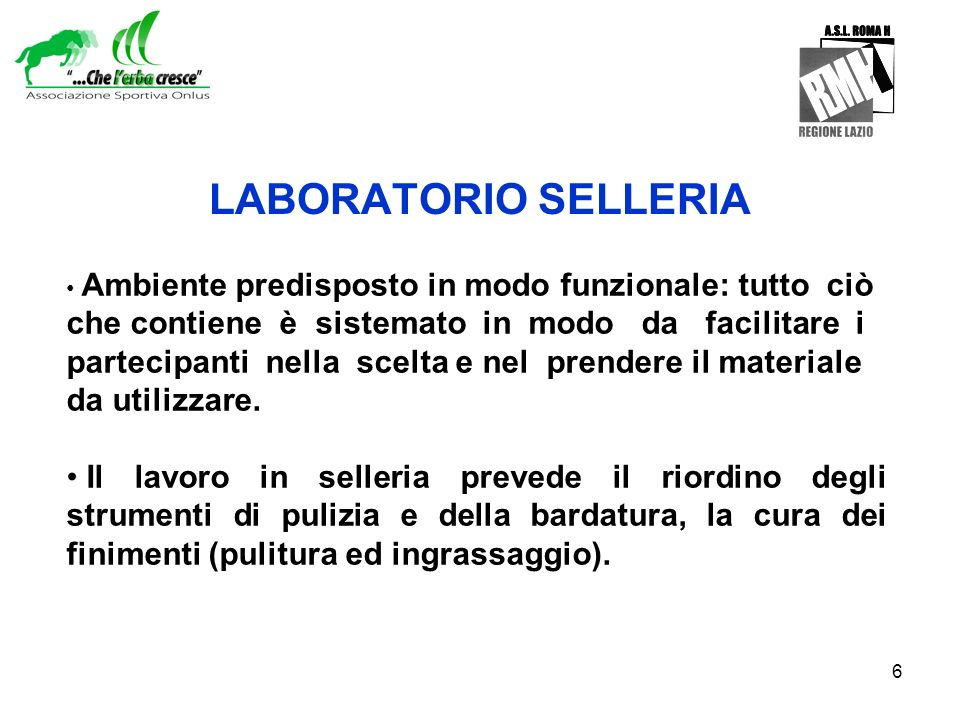 LABORATORIO SELLERIA