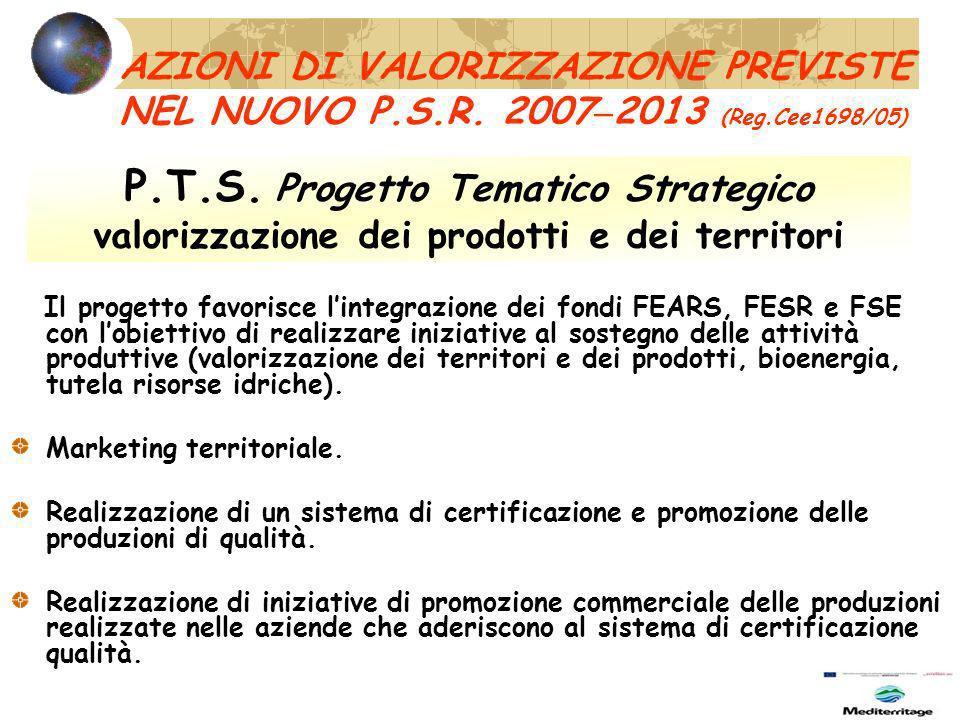 P.T.S. Progetto Tematico Strategico