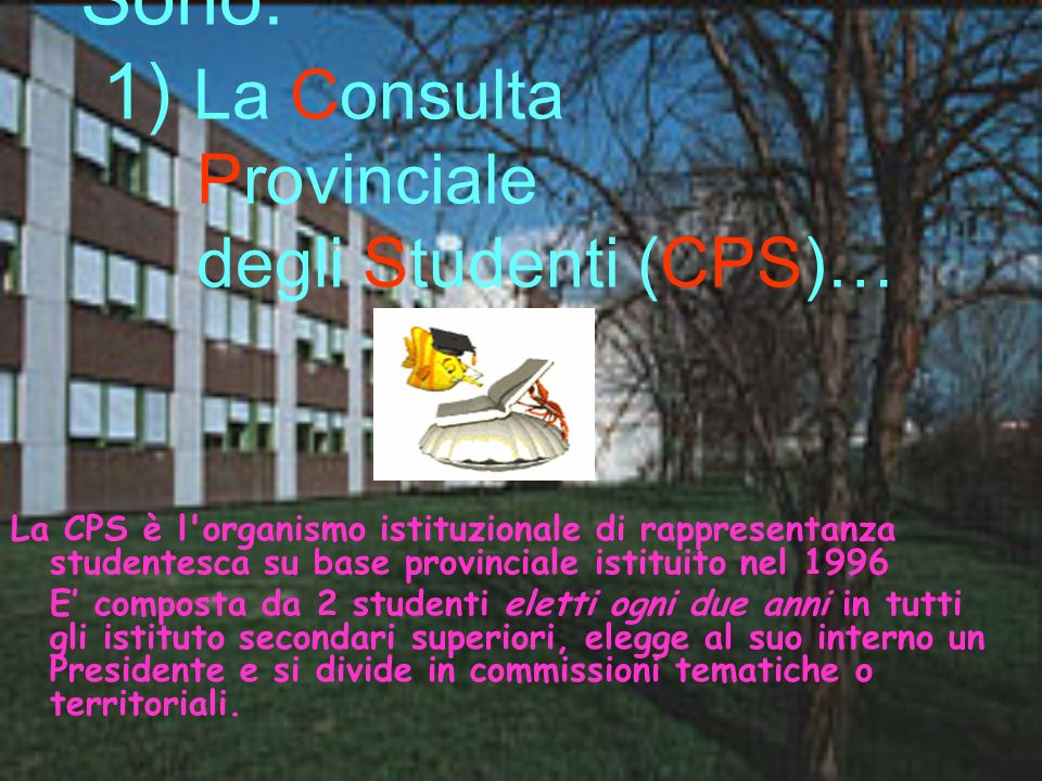 Sono: 1) La Consulta Provinciale degli Studenti (CPS)…