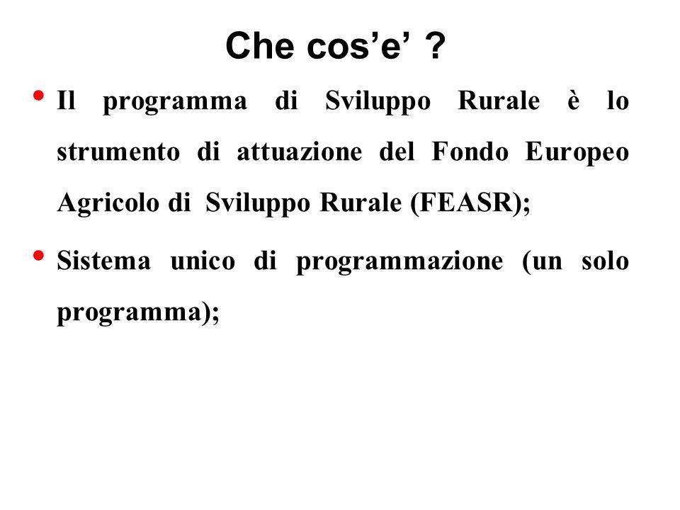 Che cos'e' Il programma di Sviluppo Rurale è lo strumento di attuazione del Fondo Europeo Agricolo di Sviluppo Rurale (FEASR);