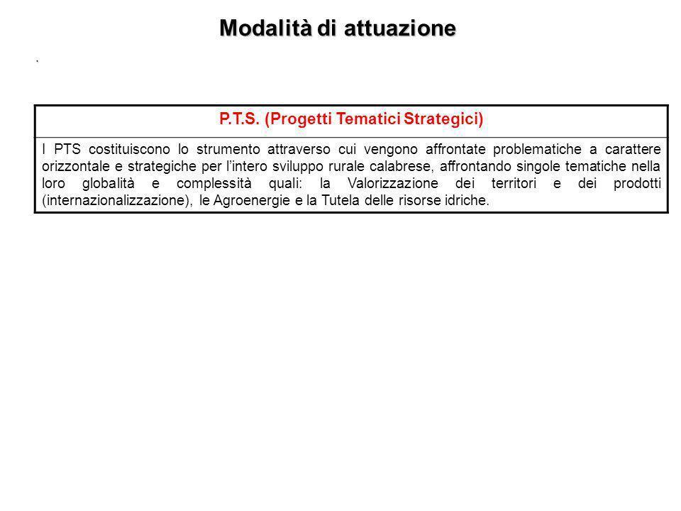 Modalità di attuazione P.T.S. (Progetti Tematici Strategici)