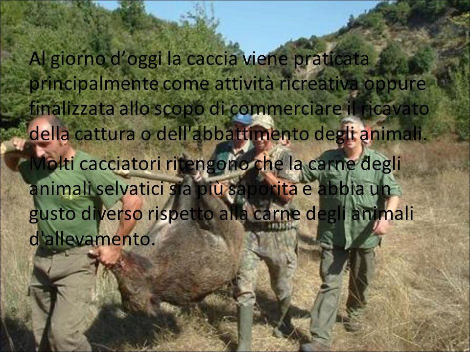 Al giorno d'oggi la caccia viene praticata principalmente come attività ricreativa oppure finalizzata allo scopo di commerciare il ricavato della cattura o dell abbattimento degli animali.