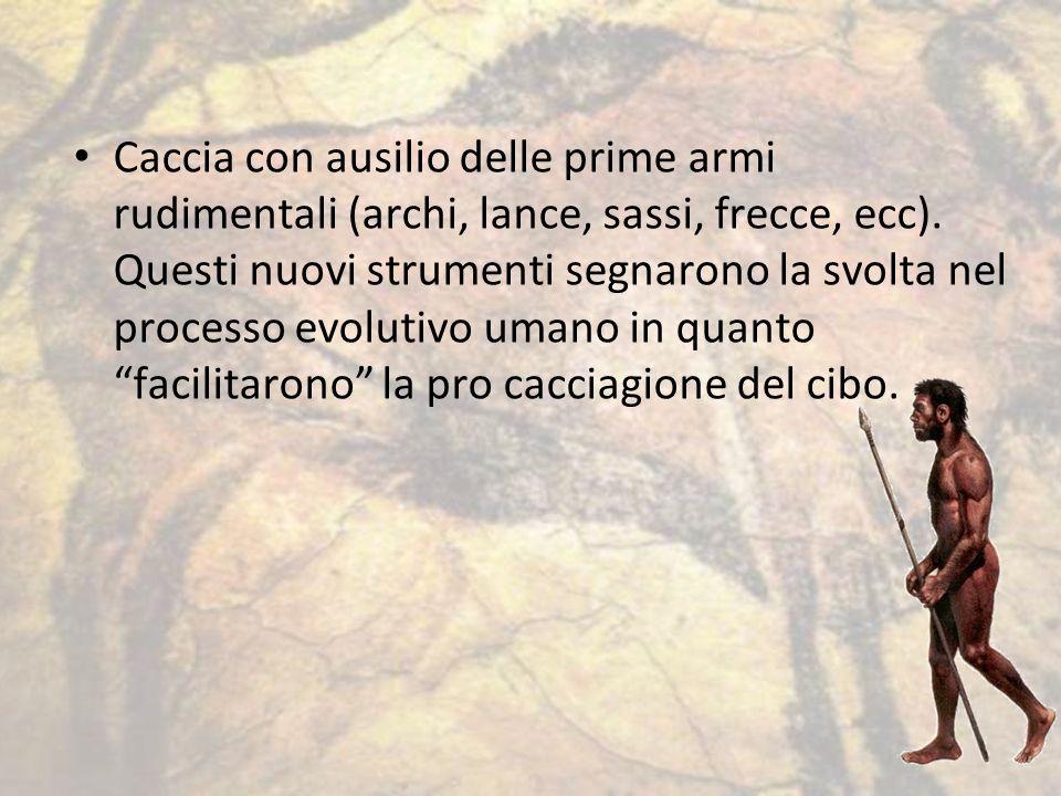 Caccia con ausilio delle prime armi rudimentali (archi, lance, sassi, frecce, ecc).