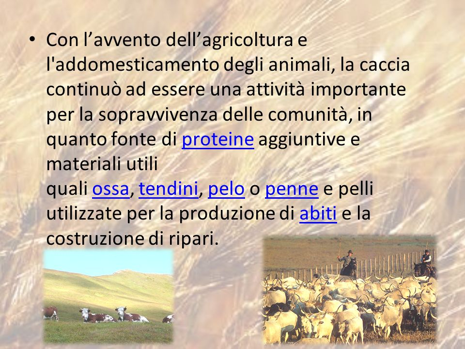 Con l'avvento dell'agricoltura e l addomesticamento degli animali, la caccia continuò ad essere una attività importante per la sopravvivenza delle comunità, in quanto fonte di proteine aggiuntive e materiali utili quali ossa, tendini, pelo o penne e pelli utilizzate per la produzione di abiti e la costruzione di ripari.