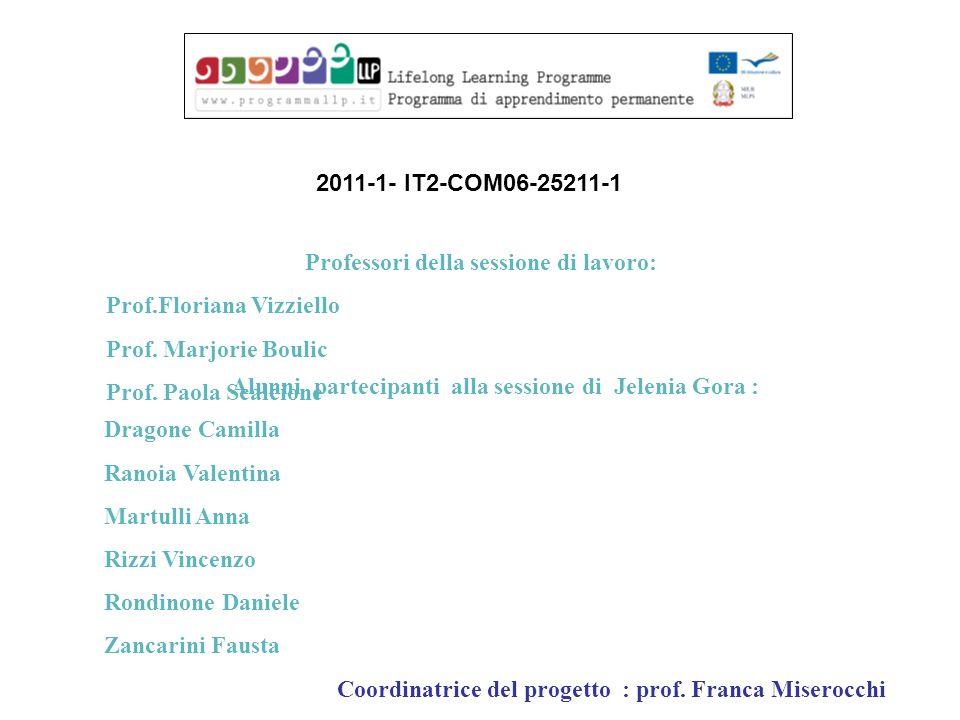 Professori della sessione di lavoro: Prof.Floriana Vizziello