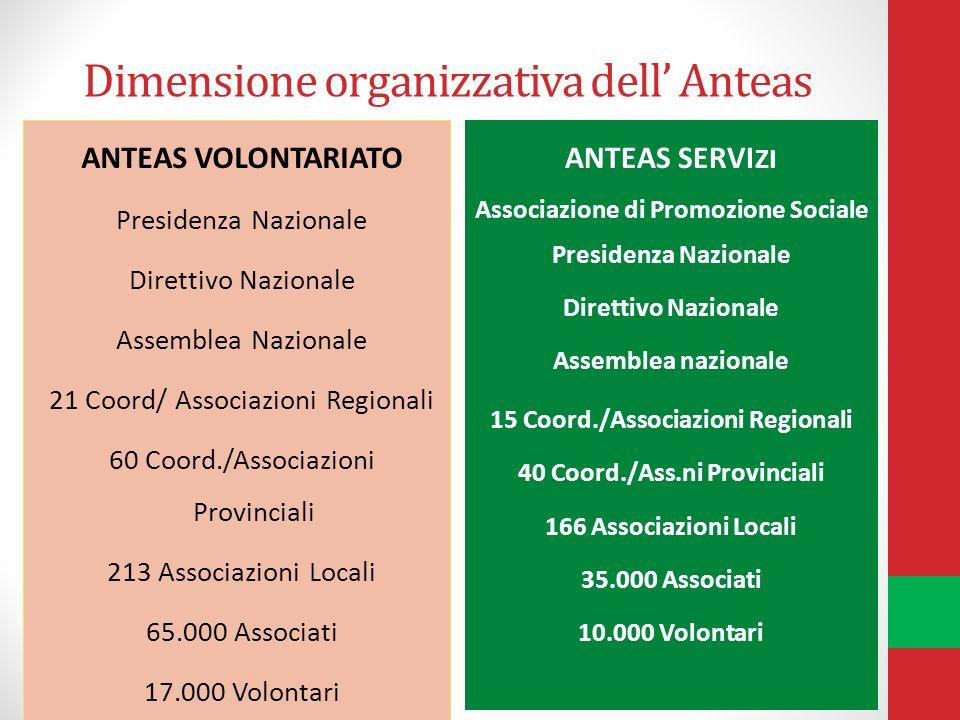 Dimensione organizzativa dell' Anteas