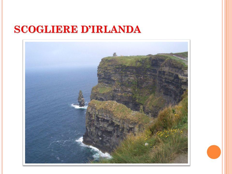 SCOGLIERE D'IRLANDA