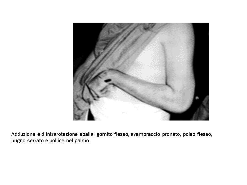 Adduzione e d intrarotazione spalla, gomito flesso, avambraccio pronato, polso flesso, pugno serrato e pollice nel palmo.
