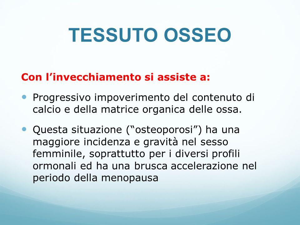 TESSUTO OSSEO Con l'invecchiamento si assiste a: