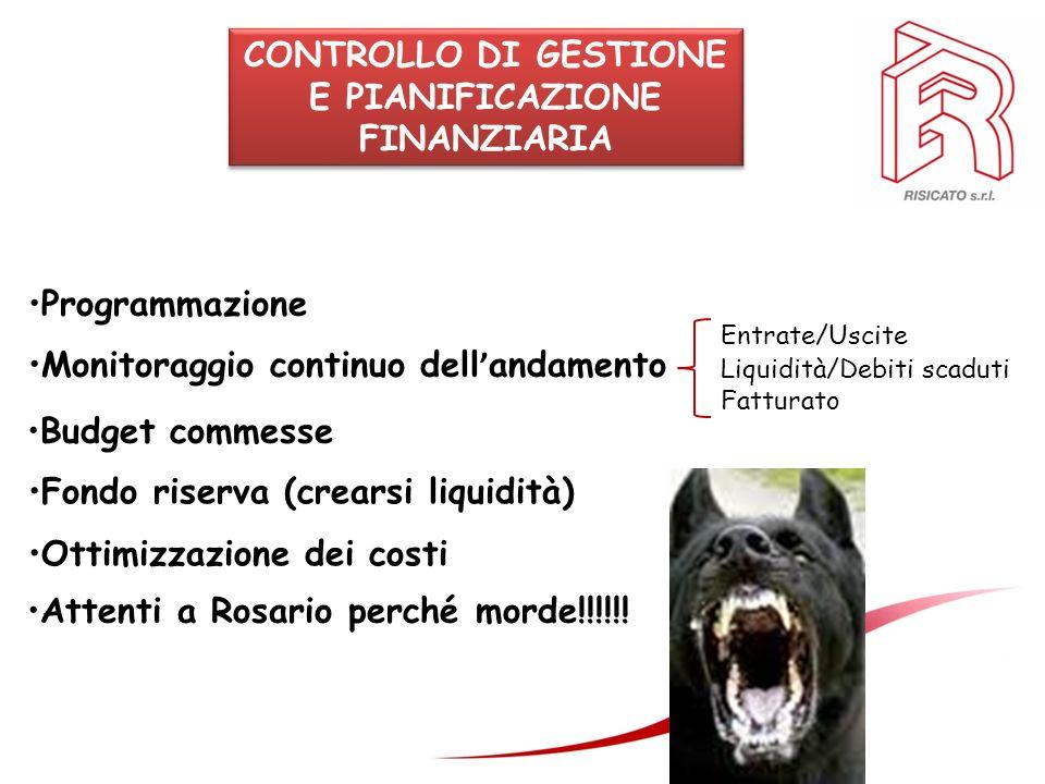 CONTROLLO DI GESTIONE E PIANIFICAZIONE FINANZIARIA