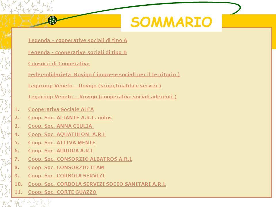 SOMMARIO Legenda - cooperative sociali di tipo A