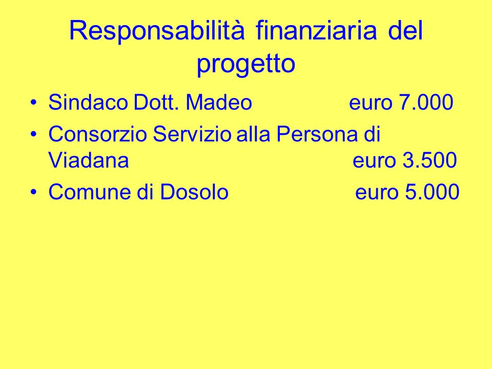 Responsabilità finanziaria del progetto