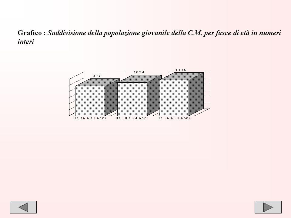 Grafico : Suddivisione della popolazione giovanile della C. M