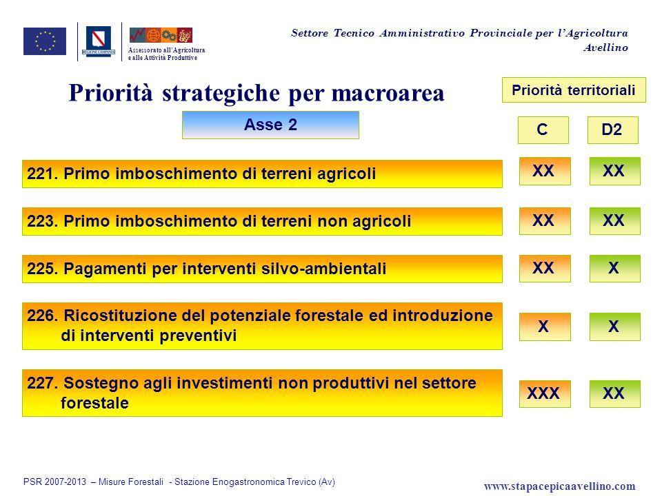 Priorità strategiche per macroarea Priorità territoriali