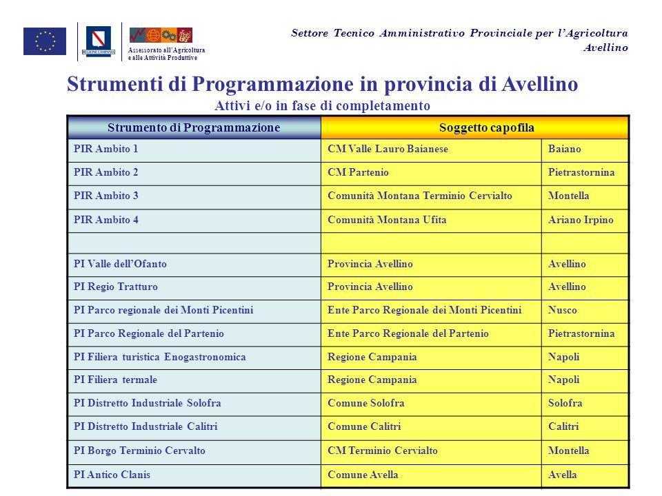 Strumenti di Programmazione in provincia di Avellino
