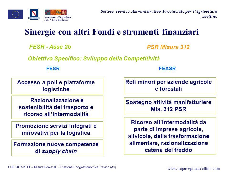 Sinergie con altri Fondi e strumenti finanziari
