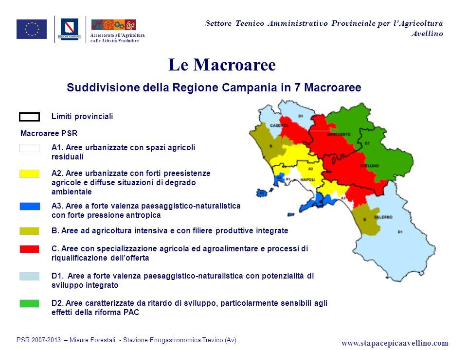 Suddivisione della Regione Campania in 7 Macroaree
