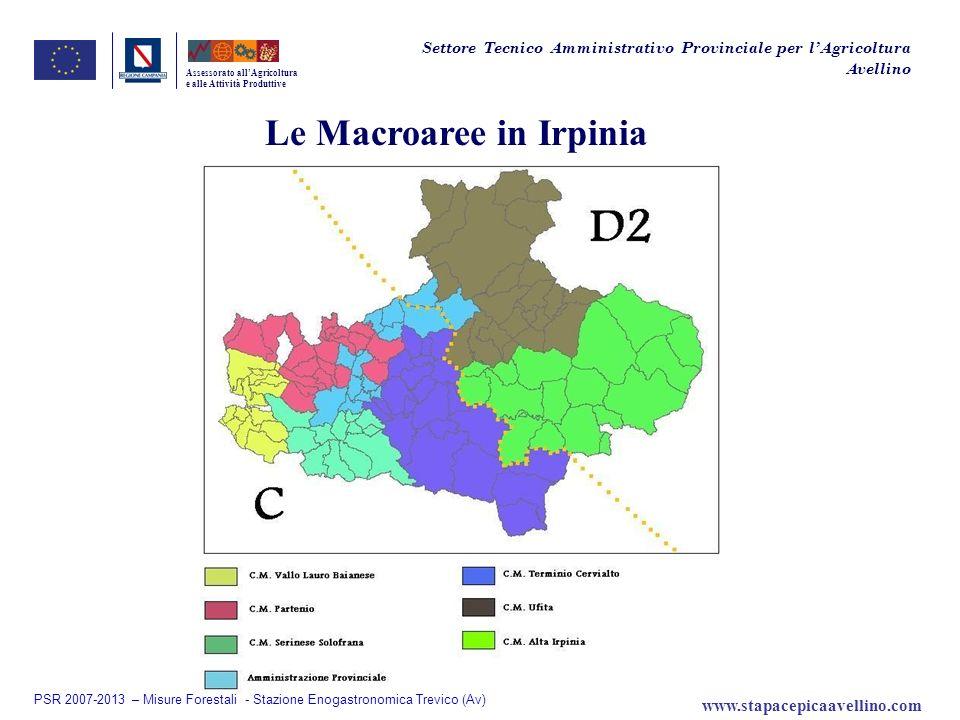 Le Macroaree in Irpinia