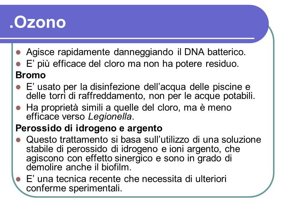 .Ozono Agisce rapidamente danneggiando il DNA batterico.