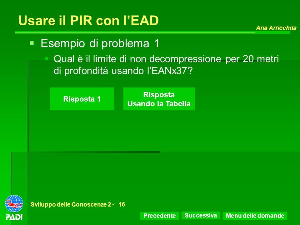 Usare il PIR con l'EAD Esempio di problema 1
