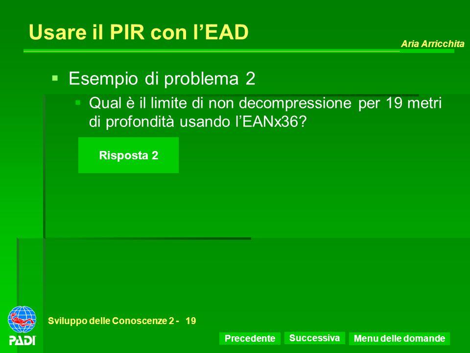 Usare il PIR con l'EAD Esempio di problema 2