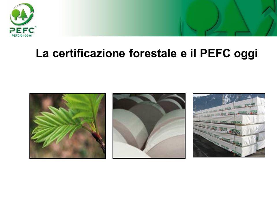 La certificazione forestale e il PEFC oggi