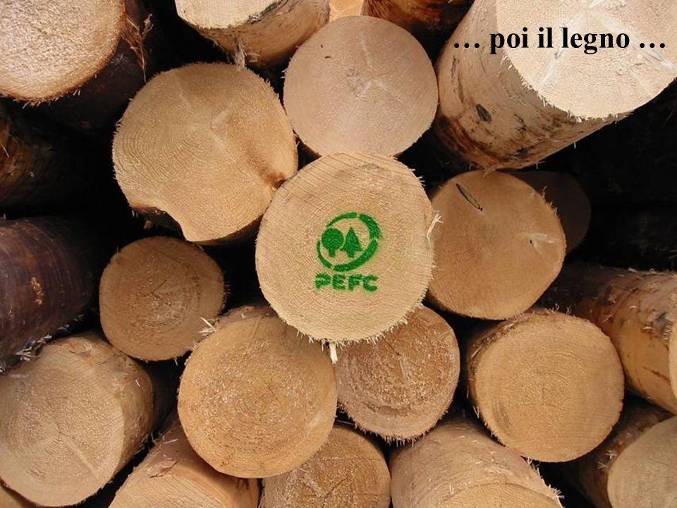 … poi il legno … ... Ma solo il legname trasferisce il concetto della buona gestione al mercato ...