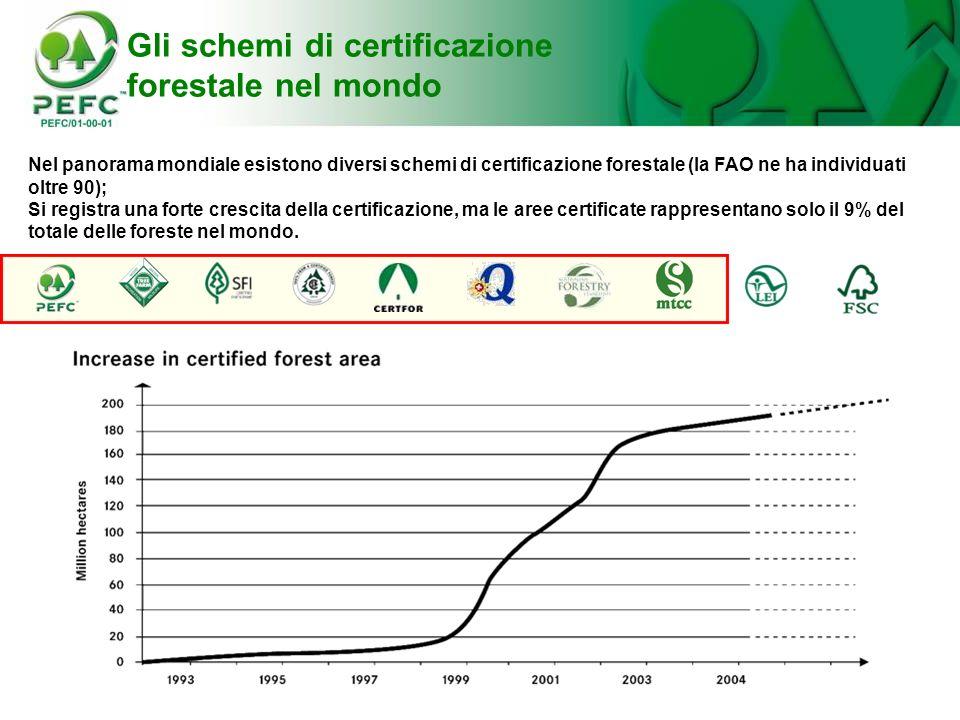 Gli schemi di certificazione forestale nel mondo